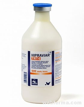 hipraviar-TRT4