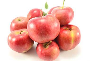 Яблоня сорта