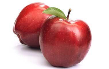 Выбор сорта яблонь